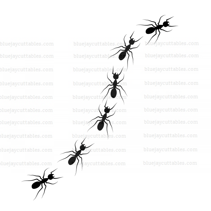 Ant Trail Cuttable SVG and Printable PNG File