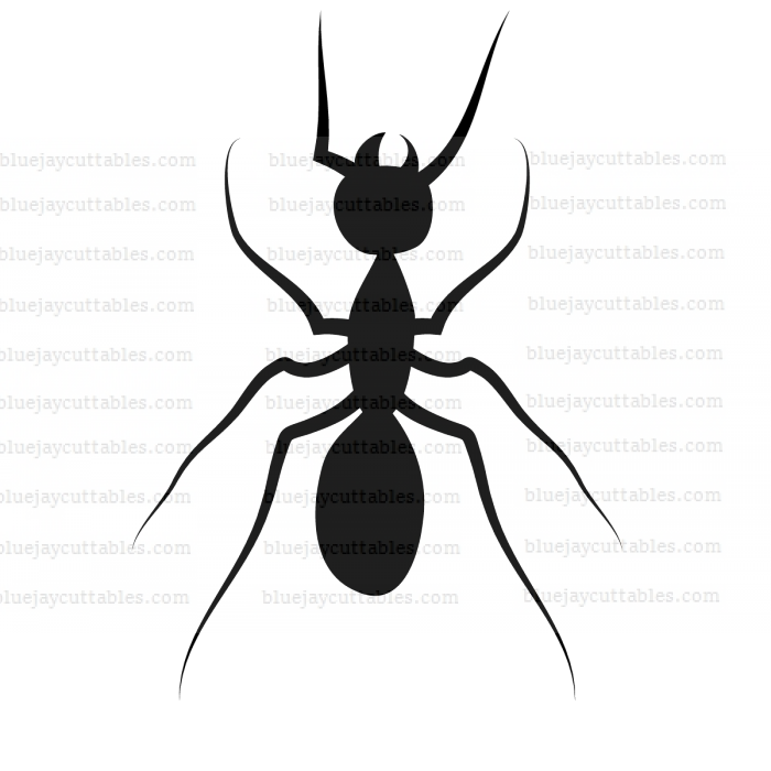 Ant Cuttable SVG and Printable PNG File